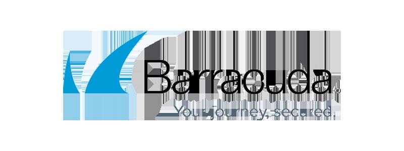 Barracuda Network Security Logo